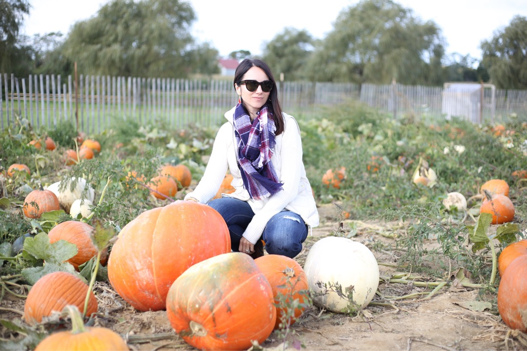 fall outfit vest, sweater and scarf